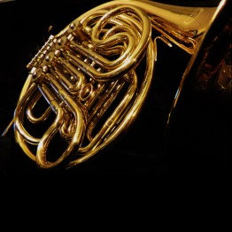 Castle CDH-LARF-L Double French Horn